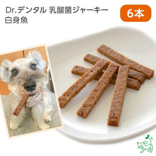 【Dr.デンタル乳酸菌ジャーキー】 白身魚 (1本×6袋)