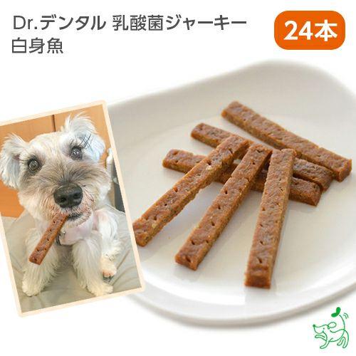 【Dr.デンタル乳酸菌ジャーキー】 白身魚 (1本×24袋)