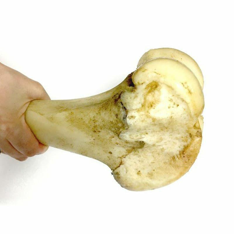 神戸牛の牛骨(げんこつ有)中