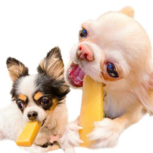 『ドッグチュルピ』XSサイズ
