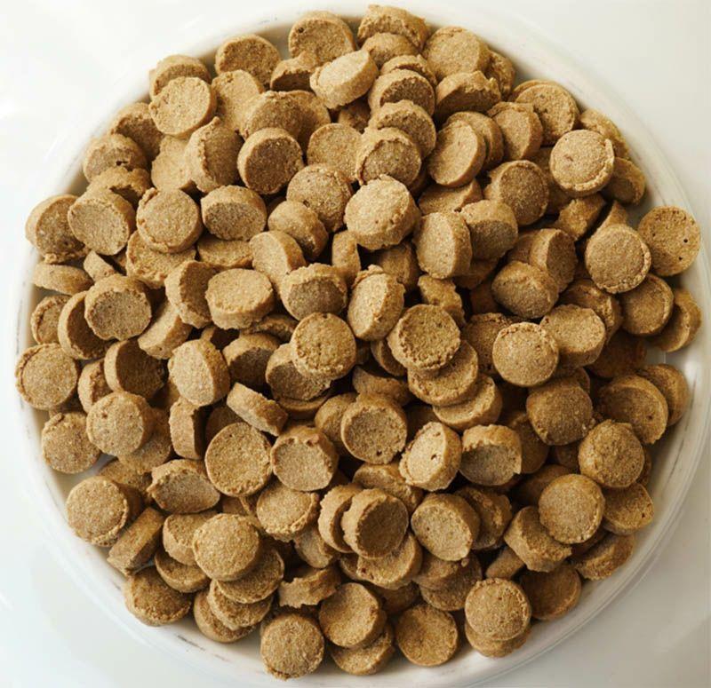 【Yum Yum Yum!】シニア&ライト 馬肉 ドライタイプ 2kg