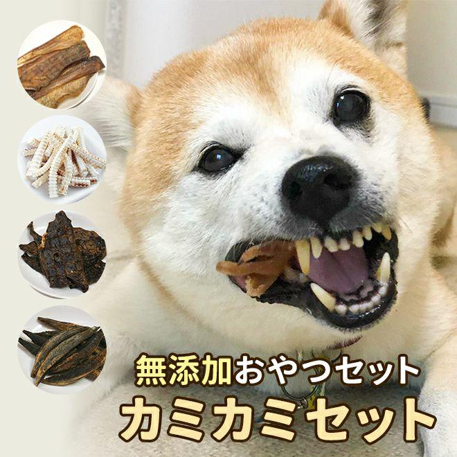 【無添加おやつセット】カミカミセット